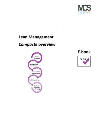 Lean Management E-book